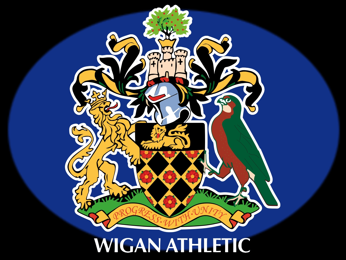 Chùm ảnh: Wigan Athletic (17)