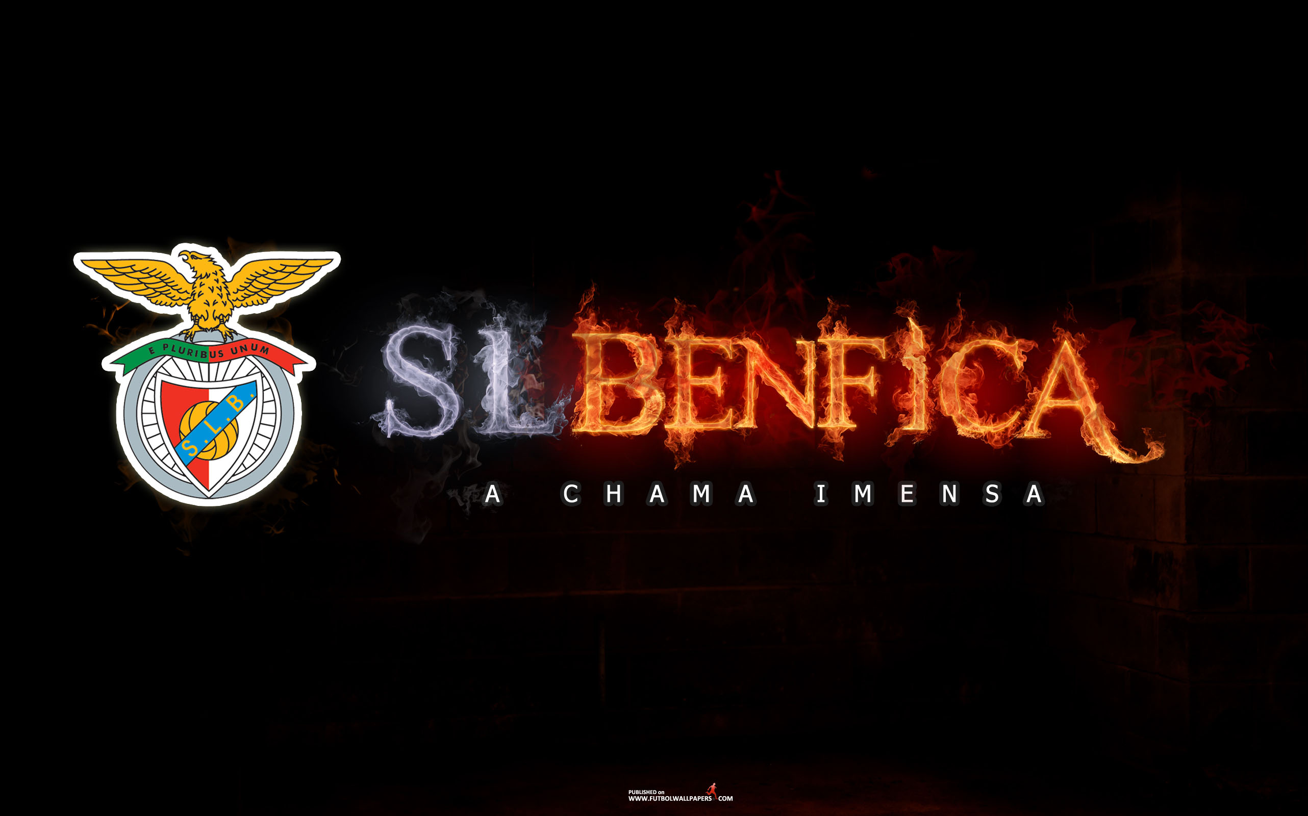 Chùm ảnh: SL Benfica (1)